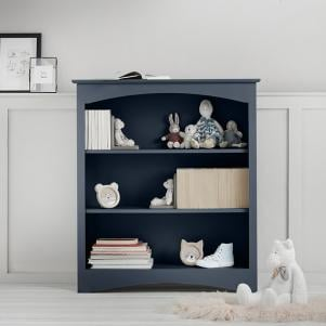 Barney and Boo Low Bookcase